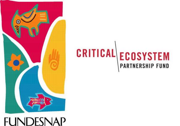 Cuarta Convocatoria a Proyectos en el Hotspot de Biodiversidad de Los Andes Tropicales