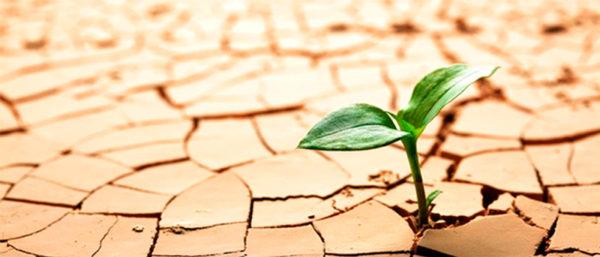 Curso Virtual: Perspectivas sobre resiliencia en América Latina (3ra Versión)