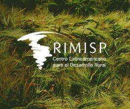 Informe de Prensa del Rimisp