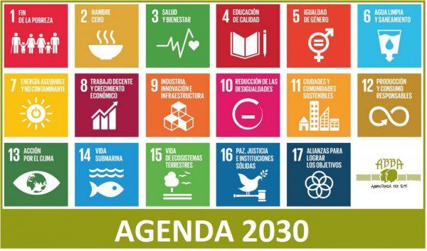 Cuarta edición: Boletín del Observatorio Regional de Planificación para el Desarrollo de América Latina y el Caribe
