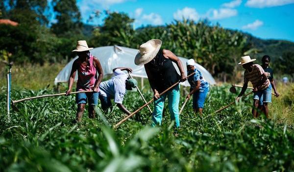 Novedades Nº680 del Sitio Biodiversidad de América Latina y El Caribe