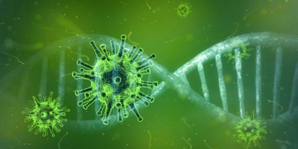 Educación (virtual) en tiempos de coronavirus