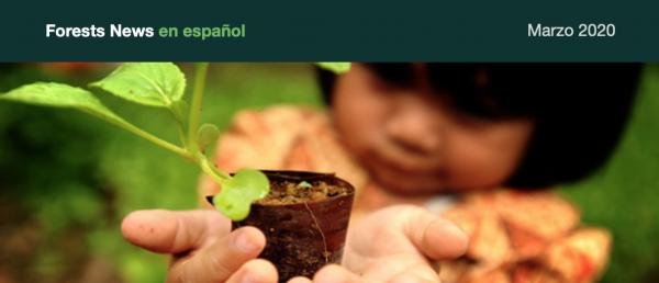 #QuédateEnCasa e infórmate sobre restauración forestal, humedales, agroforestería y más
