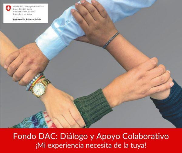 Cooperación Suiza en Bolivia abre postulaciones para Fondo DAC: Diálogo y Apoyo Colaborativo