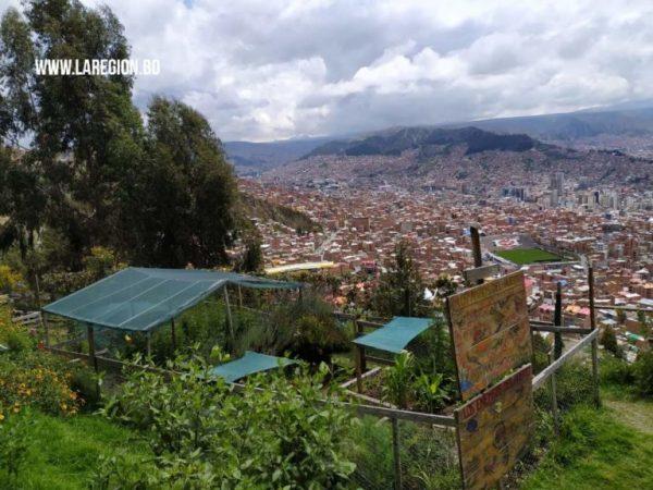 Vecinos muestran que es posible tener huertos urbanos incluso a 3.600 metros de altura