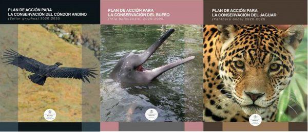 Planes de Acción para la conservación del Jaguar, del Bufeo y del Condor.