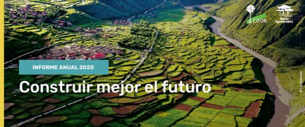 Informe Anual CIFOR-ICRAF 2020: Historias de experiencia, dedicación y perseverancia.