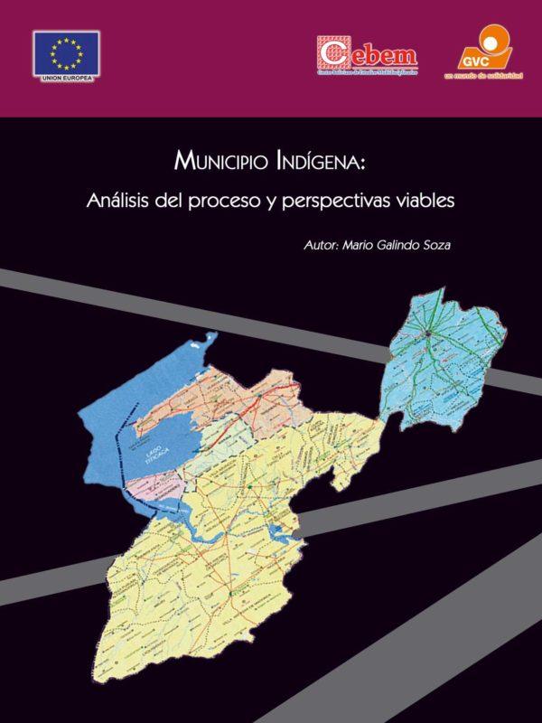 MUNICIPIO INDÍGENA: Análisis del Proceso y Perspectivas Viables